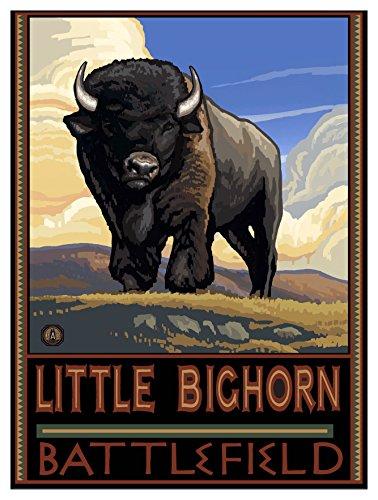 Little Bighorn Battlefield South Dakota Buffalo Plains Travel Art Print Poster by Paul A. Lanquist (9