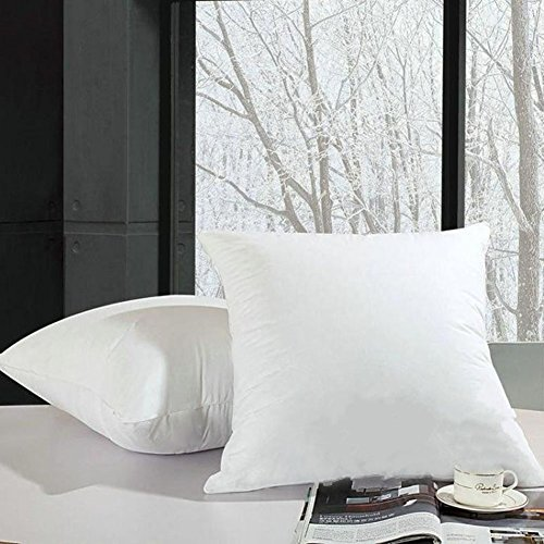 Decorative Throw Pillow Insert 18x18 inch - Hypoallergenic Foam Stuffer - Standard Square / Sequin Pillow Inserts for Sofa Couch and Outdoor, White 2 Pack 18