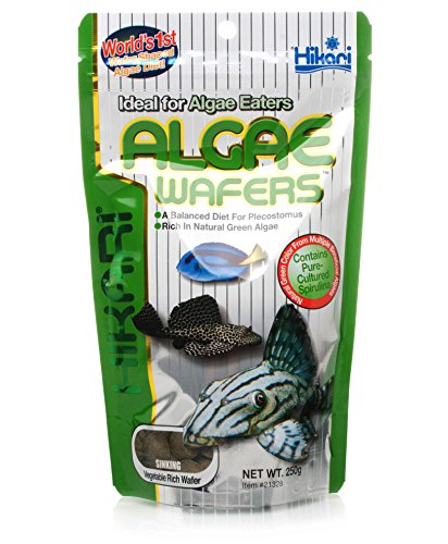 Hikari Tropical Algae Wafers Complete and Balanced Fish Food 82g [Misc.]