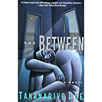 The Between: Novel, A book cover