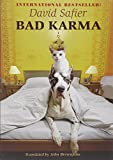 Front cover for the book Bad Karma by David Safier