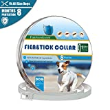 Flea and Tick Collar for Dogs, 100% Quality Natural Essential Oil Collar for Dog, 8 Months Protection, Allergy Free, Safe And Waterproof, 25 Inches Flea and Tick Control Collar Fits Small Medium Large