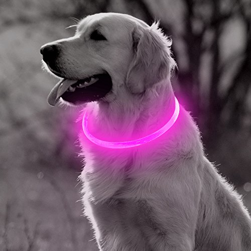BSEEN Led Dog Collar, USB Rechargeable TPU Glowing Pet Collar, Light up Flashing Dog Lighted Collars for Small Medium Large Dogs (Pink)