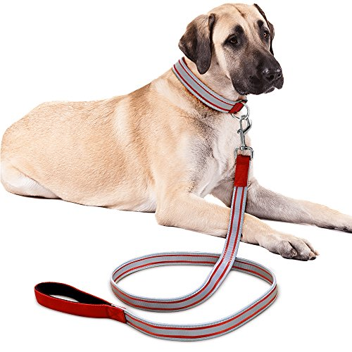 Higo Reflective Dog Collar& Leash Set, Durable Nylon Webbing Pet Collar and Leash with Reflective Strip for Medium Dogs(M, Red)