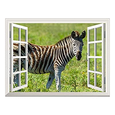 Removable Wall Sticker/Wall Mural - Open Field with a Zebra Walking by | Creative Window View Wall Decor - 36