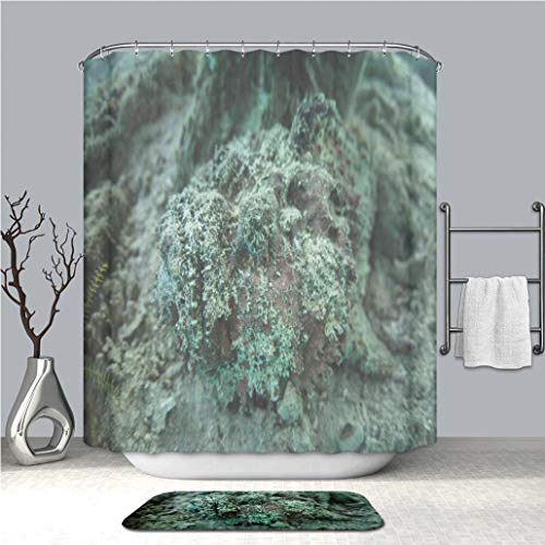 BEICICI Shower Curtain and Bath mat Rug Camouflaged Stonefish in Raja Ampat Custom Stylish,Waterproof,Mildew Proof Bathroom Set