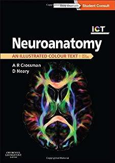 neuroanatomy an illustrated colour text 5e - Neuroanatomy Coloring Book