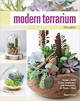 Modern Terrarium Studio Design Build Custom Landscapes With