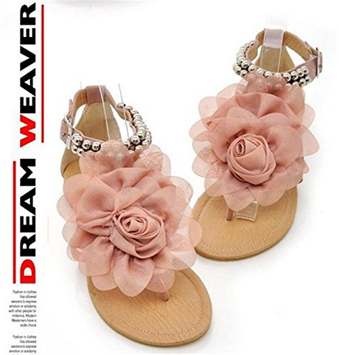 Shoes Beaded Flat For Flip Westbrook Women Summer Flops Flower Pink Heels Robert Sandals Women'S Sandals wWI7qanWg
