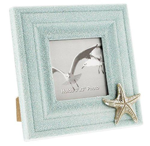 Starfish Frame - Fancy That 6.5