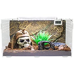 Dalle Craft Acrylic Artificial Landscapes Reptile Terrarium 'Landscape of Egyptian Pharaoh Skull with Broken Wine Barrels and Grass' for Larval Amphibians (Type1)