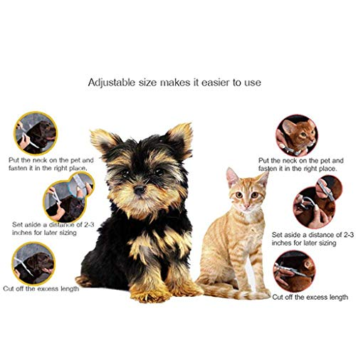 Qpets® Flea and Tick Collar for Dog Cat Flea & Tick Collar Anti Flea Collar Natural & Safe Efficiently Repell Locust Lice of Pets for Small Medium Large Pets