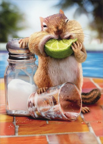 (Chipmunk Lime Mouth Stand Out - Avanti Funny Pop Up Birthday Card)
