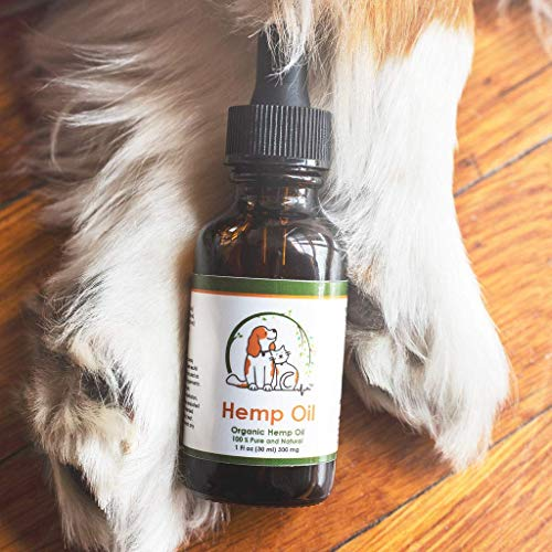 51jrJbD1mUL - Valerio Pet Hemp Oil Dog Cat, Anxiety Relief, Arthritis Pain, Hip, Joint, Separation Anxiety, Stress, Seizures, Anti-Inflammatory, USDA Certified Organic