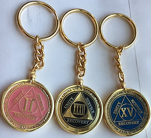 RecoveryChip Reflex or Elegant AA Medallion Keychain Sobriety Chip Holder 18k Gold Plated (Medallion Keychain Holder)