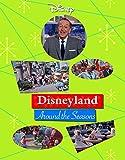 Disneyland Around the Seasons