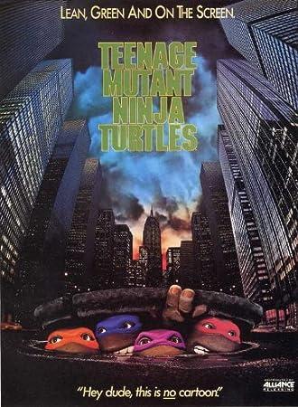 Amazon.com: Teenage Mutant Ninja Turtles 11 x 17 Movie ...