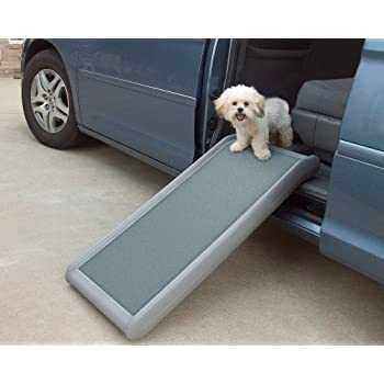 Amazon.com : Pet Gear Indoor Bi-Fold Half Ramp for Cats and Dogs ...