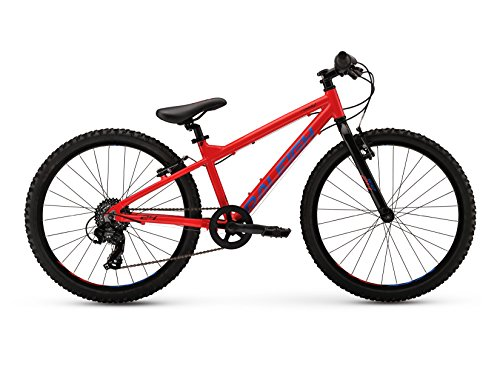 Raleigh Bikes Kids Rowdy 24 Mountain Bike, 24'/One Size, Red