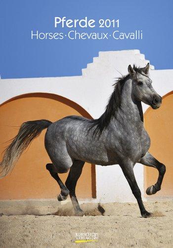 Großer farbiger Pferdekalender, Horses, Chevaux, Cavalli 2011