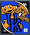 "Kentucky Wildcats NCAA Team Logo Photo (Size: 17"" x 21"") Framed"