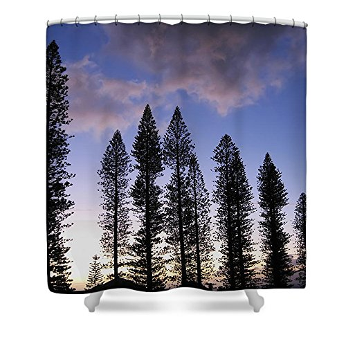 Pixels Shower Curtain (74'' x 71'') ''Trees In Silhouette'' by Pixels