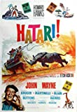 Hatari Plakat Movie Poster (11 x 17 Inches - 28cm x 44cm) (1962) Spanish