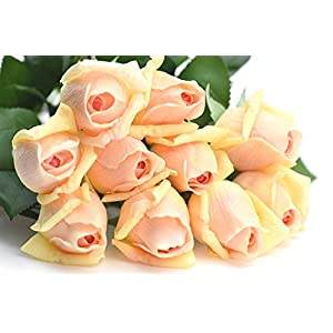 FiveSeasonStuff 10 Stems of Real Touch Silk Roses 'Petals Feel and Look like Fresh Roses' Artificial Flower Bouquet for Wedding Bridal Office Party Home Decor 11