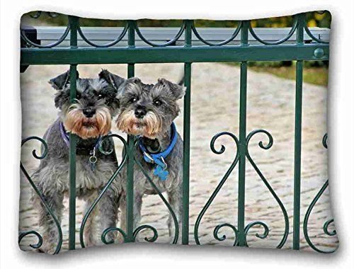 (Custom ( Animals miniature schnauzer dogss couple fence lattice ) Custom Zippered Pillow Case 20x26 inches(one sides) from Surprise you suitable for X-Long Twin-bed)