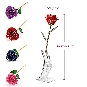 DDSKY Gold Rose, 24K Gold Trimmed Rose Long Stem Flower with Transparent Stand Creative Romantic Gift for Valentine's Day, Mother's Day, Anniversary (Red) 4