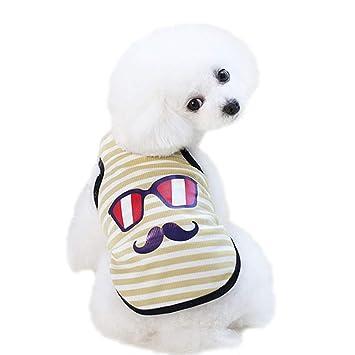 T.boys's Haustier Pets T Shirt für Hund und Katze Pet