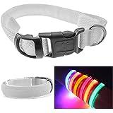 InnoLife LED Dog Night Safety Collar LED Light up W/circular Pendant Nylon Collar (Size: S Colorfull)
