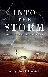 Into the Storm: The Thunderbird Chronicles, Book 2