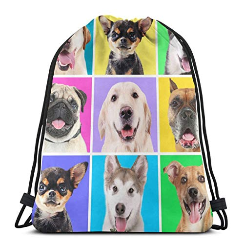 Cute Dogs Colorful Drawstring Bag Backpack Travel Gymsack Drawstring Backpack Sackpack