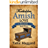 The Secret (Forbidden Amish Love Book 3)