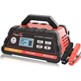 2/8/15A 12V Smart Battery Charger/Maintainer Fully Automatic with Cable Clamps, Winter Mode