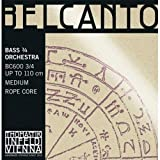 Thomastik-Infeld BC62 Belcanto Double Bass Strings, Single D String, BC62, 3/4 Size, Rope Core Chrome Wound