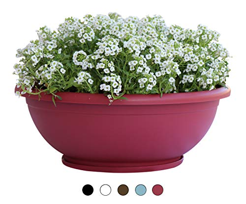 TABOR TOOLS Plastic Planter Bowl, Garden Bowl for Indoor and Outdoor Use, Round. VEN304A. (12