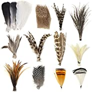Fly Tying Materials Starter Kit 12 Species Fly Tying Feathers Hair