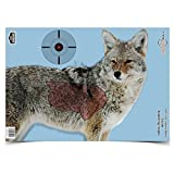 Cheap BWC 35405 PreGame Coyote 16.5×24 by Birchwood Casey