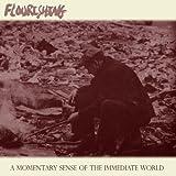A Momentary Sense Of The Immediate World by Flourishing (2010-03-30)