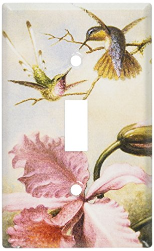 Art Plates - Heade: Orchids & Hummingbirds Switch Plate - Single Toggle