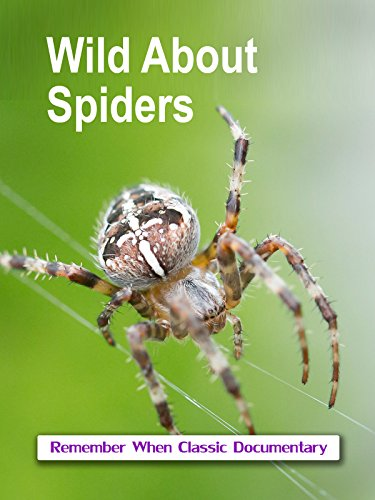 Wild About - Spiders