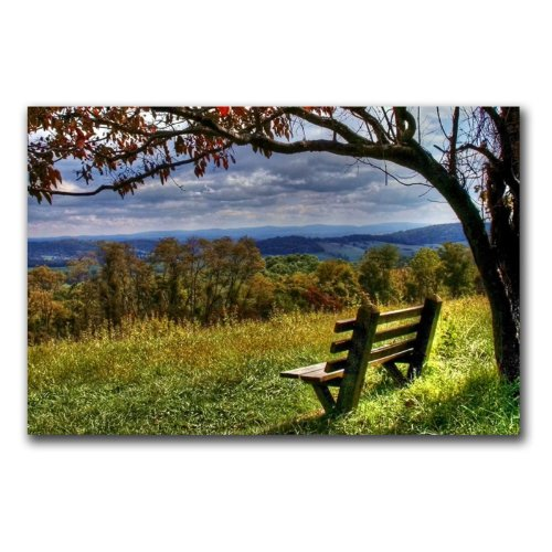 Trademark Fine Art Walk Alone by CATeyes, 16x24-Inch Canvas Wall Art by Trademark Fine Art