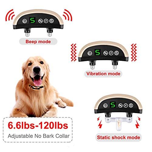 REGIROCK 2019 Upgrade Version Barking Control Collar - Rechargeable & Rainproof No Bark Collar Sound, Vibration Static Shock - 7 Levels Sensitivity Small Medium Large Dog