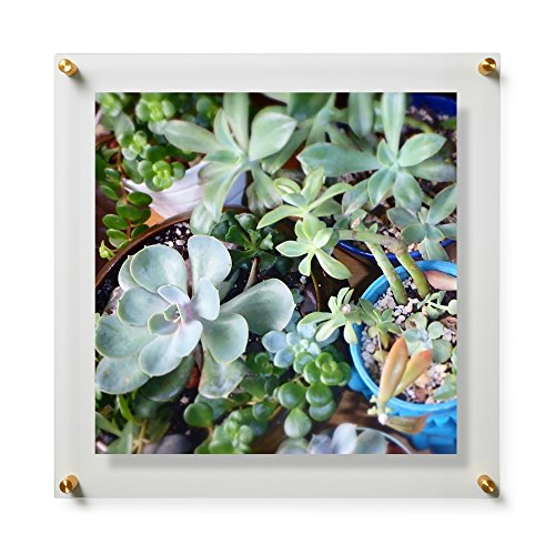 Double Panel Grade Acrylic Floating Frame with Gold Hardware for, 20x20-Inch Art & Photos ()