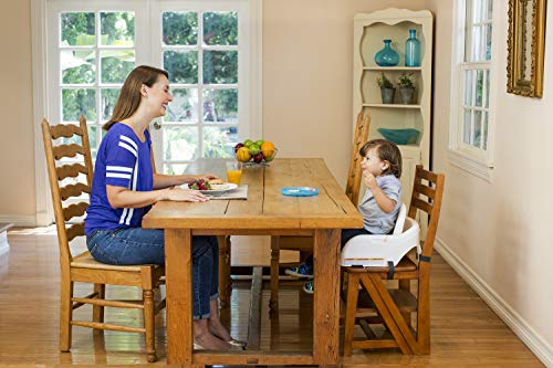 51jswfS7g6L - Graco Blossom 6 In 1 Convertible High Chair, Sapphire