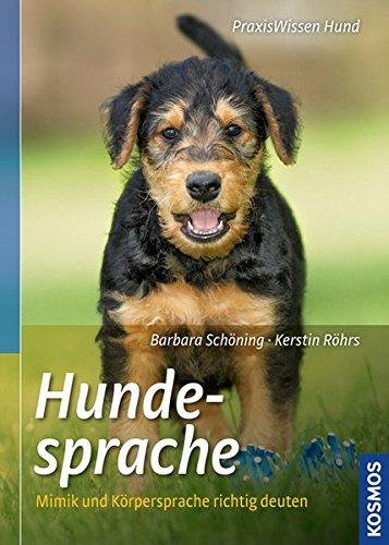 Hundesprache: Mimik und Körpersprache richtig deuten