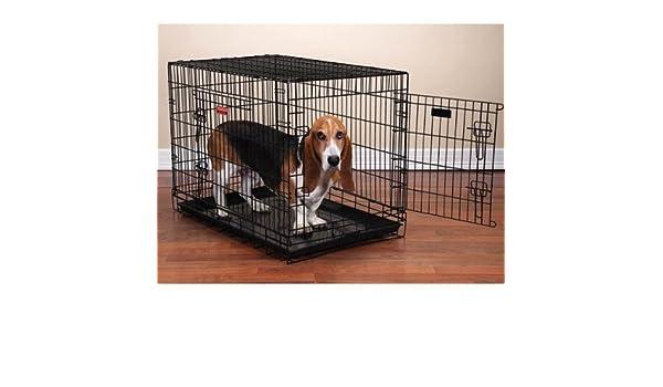 Proselect dual-door Eterno perro cajas para perros y mascotas - Negro; Medio: Amazon.es: Productos para mascotas