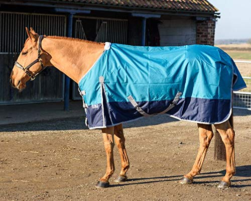 Equestrian King 600 D Two Tone No Fill Turnout Horse Rug 59 Sizes Available-53 to 69